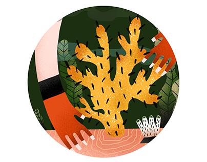 roślinne ilustracje