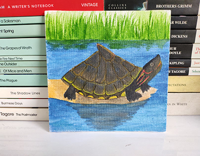 Turtle Month: May, 2021