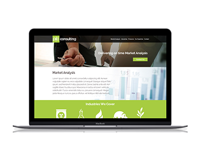 Financial Consulting Website and Logo