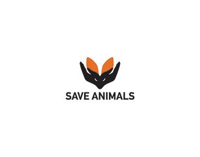 Animal test campaign