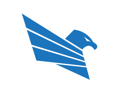 Logo - Eagle Strike