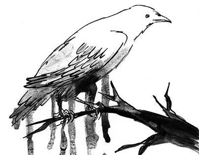 Illustrations for poems