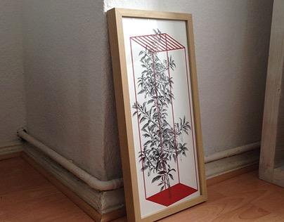 Screen Prints - Urban Plants