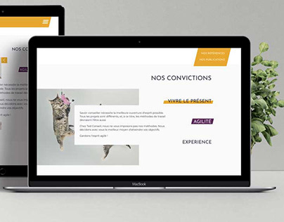 Ted Conseil - site web