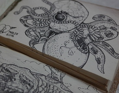 Animalia (Ink Drawings)