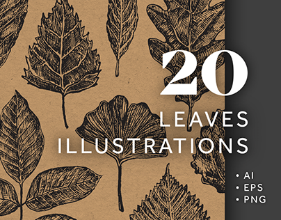 20 Leaves Illustrations