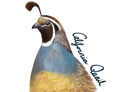 California Bird Bingo