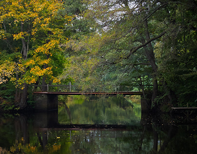 Bridge in autumn color
