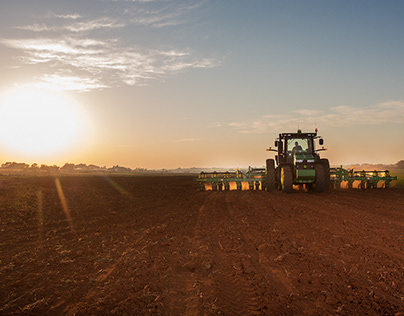 Dekalb Photoshoot - Maize Farming - Mielieboerdery -