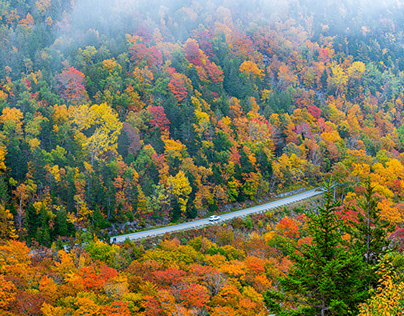 Images from Acadia National Park
