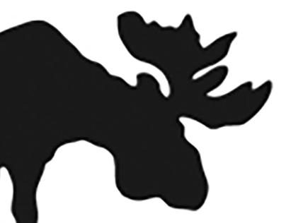 Maine Tourism Branding (Logo, OOH)
