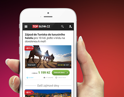 TopSleva.cz Webdesign