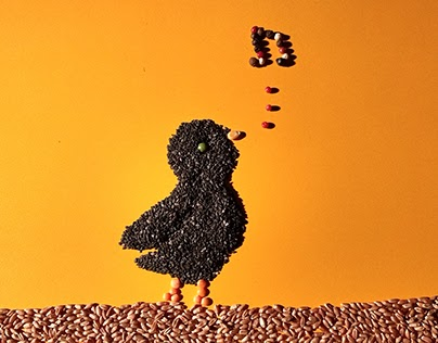 Story Bird - Stop-motion