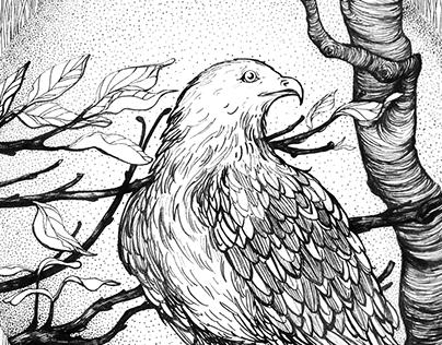 "Cards ""Birds"", 2015"