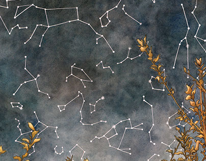"Illustration ""Constellations"""