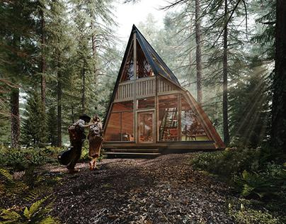 A+A Frame House