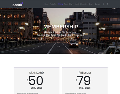 Zenith WordPress Theme - Pricing Section