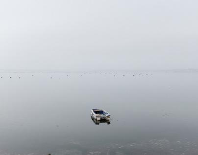 Contamination, Apulia