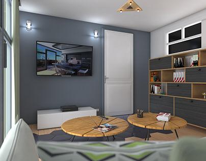 Living Room Desing / İstanbul +