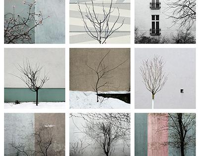 Farewell Winter