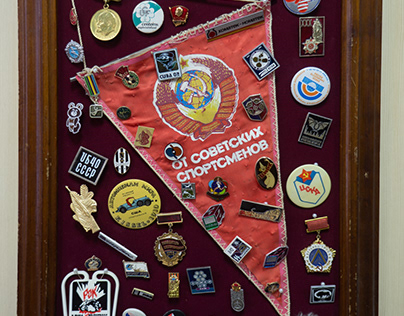 Collection of Badge