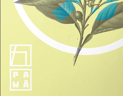 pawa/energy drink