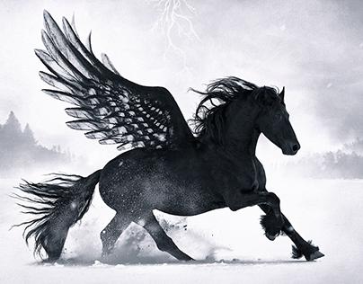 Black Pegasus Desktopography 2016