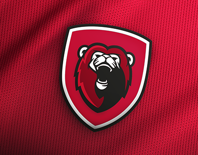 Western City Lions Brand Identity