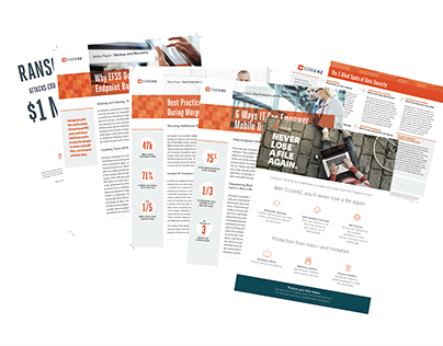Customer Collateral » Brochures, White Papers, etc