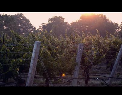 Grape Growers of Ontario - Advertisement
