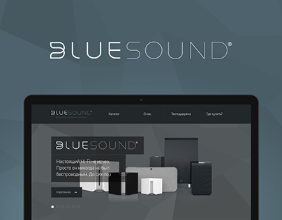 Bluesound Russia Website
