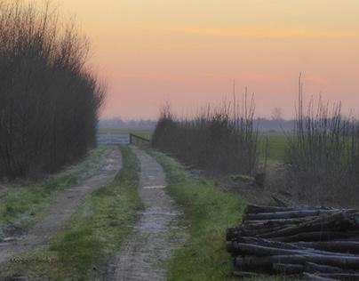 Linschoten winter, visual poetry.
