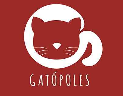 Gatópoles- Adoção de gatos