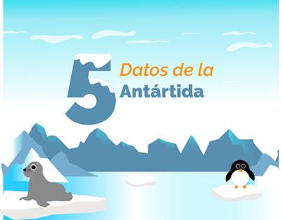 La Antártida Animación