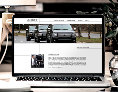 """Meron Group"" web site design"