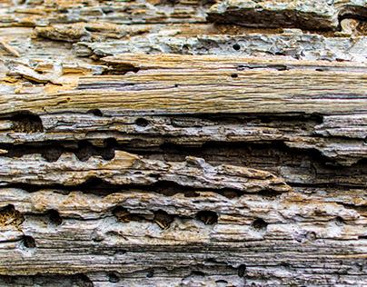 Wooden Code