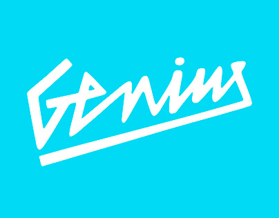 Genius Skateboards & Snowboards USA Logo Design