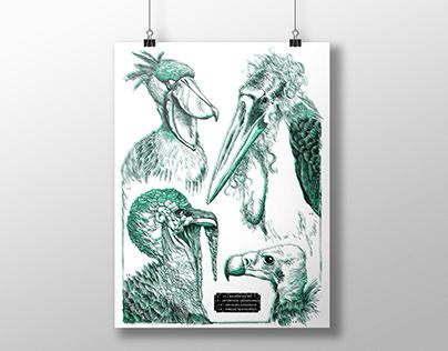 Screen Print Posters