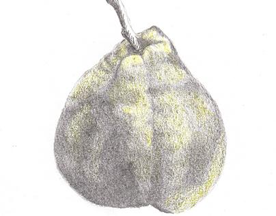 Colored pear