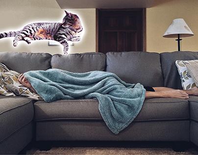 SBIM levitation picture