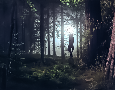 In the mysterious forest