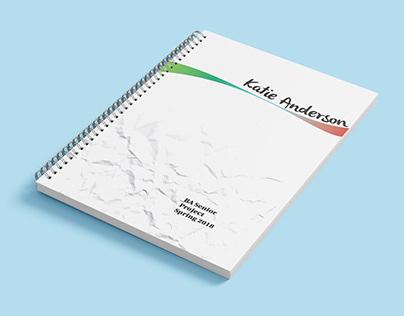 DSGN Project 4 Process Book