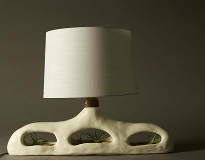 Ceramic terrarium lamps