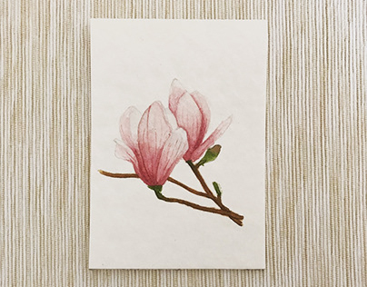 Water colour flower illustrations