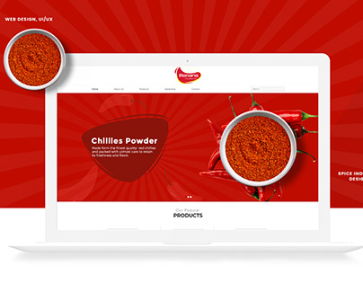 UX/UI Design For spice industry