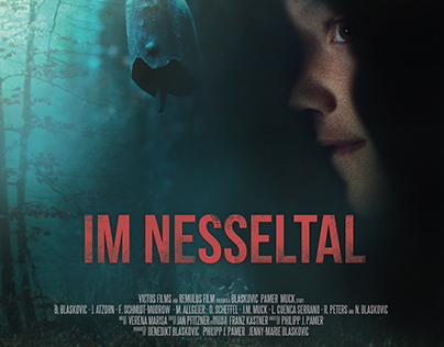 Im Nesseltal - movie poster, 2016