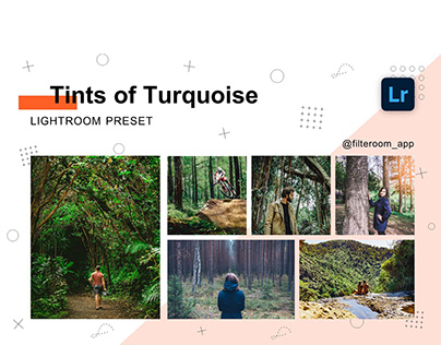 Lightroom Presets - Tints of Turquoise - Filteroom app