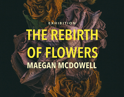 The Rebirth of Flowers