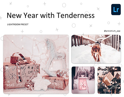 New Year with a Touch of Tenderness - Lightroom Presets