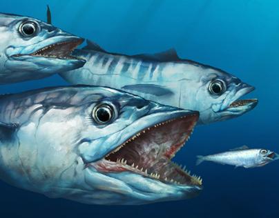 King Mackerel - Boat Wrap